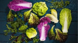 Salades spatiales