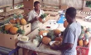 Marche Ananas PME