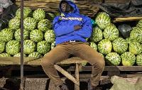 Le Sénégal, la Côte d'Ivoire et le Ghana s'en sortent mieux grâce à leur agriculture