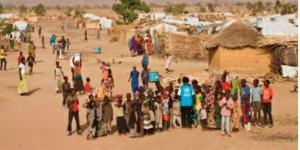 Des refugiés camerounais