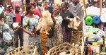 Fête de Noël: les poulets cherchent preneurs à Yaoundé