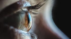 Plusieurs autres approches sont utilisées pour tenter de restaurer la vue