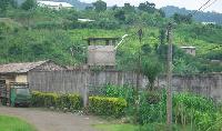 'L'état de mes clients à la prison centrale de Buea est déplorable'