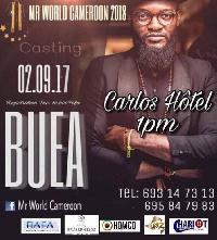 Deuxième édition de Mr World Cameroon