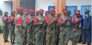 Au sein de la Gendarmerie Nationale sont répartis en deux grandes catégories