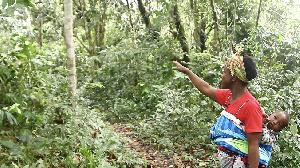 Journée internationale de la femme 2021 : celles-là qui se battent pour les droits de propriété foncière