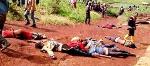 'Le Camerounais est devenu un homme sans humanité'