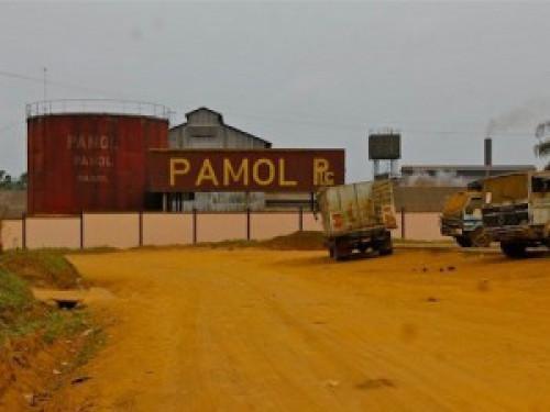 PAMOL PLC en détresse