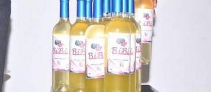 Le Vin Blanccamerounais Bibi Produit A Partir Dextraction De Jus De Pasteques C Bibi Martial 2498584