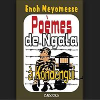 Le livre de  Enoh Meyomesse