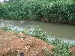 Mfoundi River Yaounde
