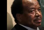 Exclusif: encore  un autre écrivain prêt à combattre le régime Biya