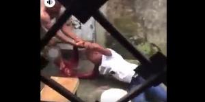 Femme battue par un homme