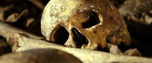 Des ossements d'homme