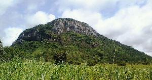 Découverte d'un trésor naturel au Cameroun