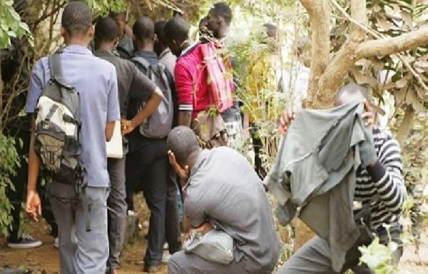 Cameroun : 40 élèves déférés à la prison