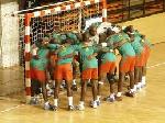 Cameroon's Handball team