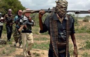 Des rebelles centrafricains