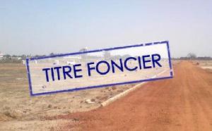 Les titres fonciers sont de plus en plus cher au Cameroun