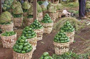 Les Fruits De L'agriculture Camerounaise