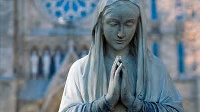 Mgr Samuel Kleda balade la vierge Marie des rues de Douala