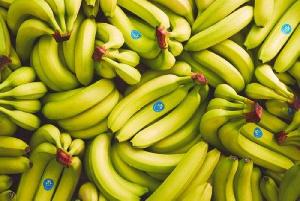 Banane Mitchell