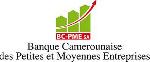 Le chiffre d'affaires des Pme camerounaises en chute de 80 % à cause du Covid-19