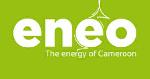 Cameroun : Eneo investira 3 milliards pour transférer 20 MW d'électricité vers le nord