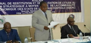 Motaze Budget Camerounweb