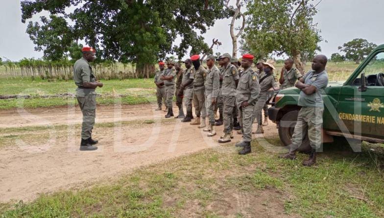 Insecurite_Trafics_Gendarmerie_Garoua