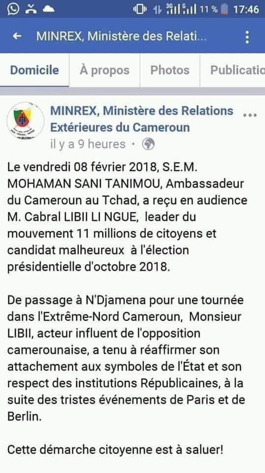 Kamto_RDPC_Cabral_Libii Arrestation de Kamto: le RDPC dévoile le rôle de Cabral Libii, voici les faits!
