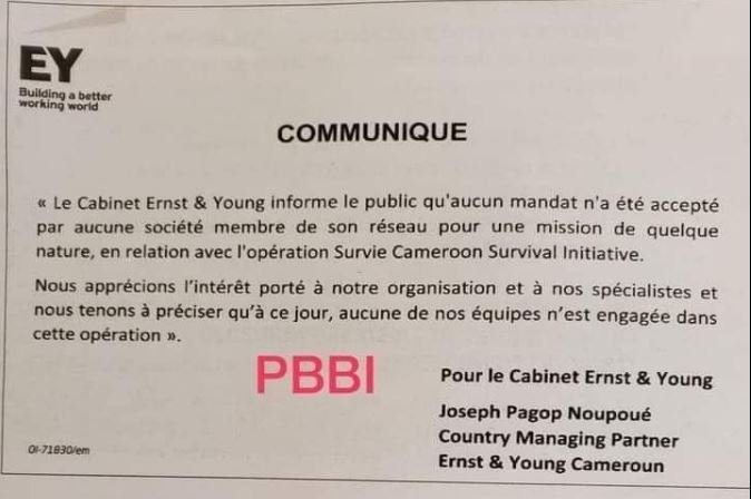 SCSI_Maurice_Kamto_Cabinet_Ernst_And_Young