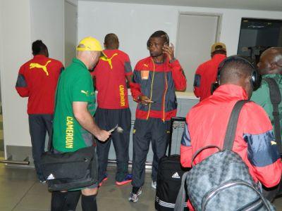 Les Lions sont à Durban en Afrique du Sud